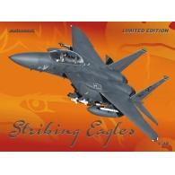 Striking Eagles (Limited Edition)